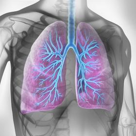 kinesitherapie respiratoire