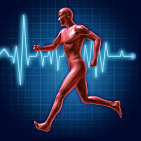 Réeducation cardiovasculaire
